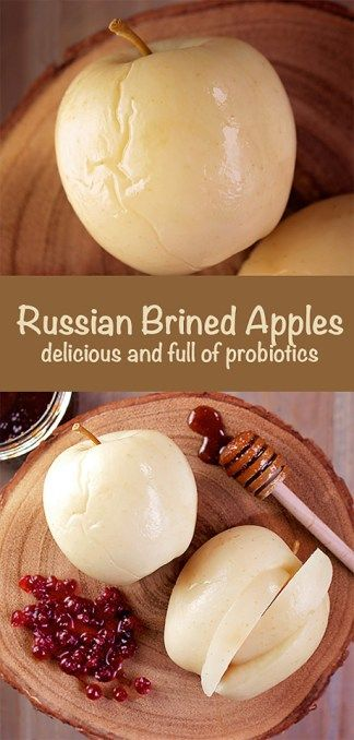 Learn how to make Russian brined apples, traditional food full of flavor, probiotics and nutrients.