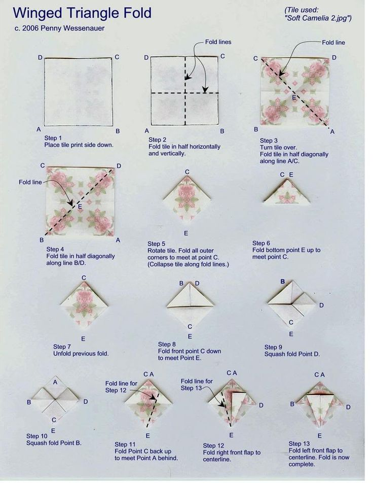 Winged Triangle fold photo pennywingedtrianglefold1-1.jpg