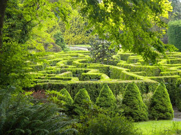 Get lost in a tall hedge maze::::  VanDusen Botanical Garden Maze (Vancouver, British Columbia, Canada)