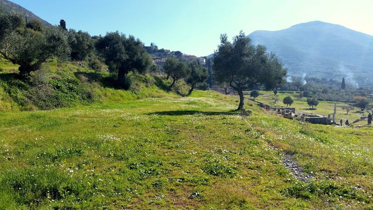 Ancient Messene - the outstanding nature in the middle of February #ancientmessne #peloponnese #ancent #messene #greece #history #culture
