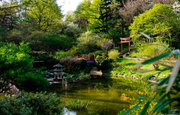 """Cluj-Napoca Botanical Garden – Its official name is """"Alexandru Borza Cluj-Napoca University Botanic Garden"""". It is not only a tourist destination but also a center for teaching and research."""