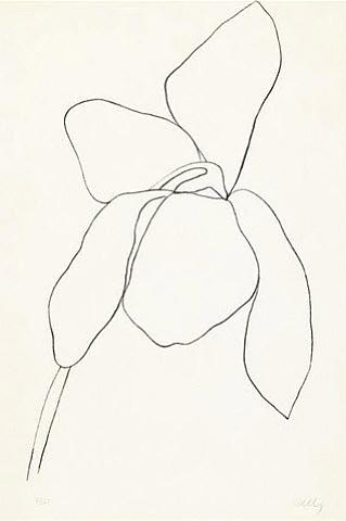 artnet Galleries: Cyclamen II by Ellsworth Kelly from Jim Kempner Fine Art