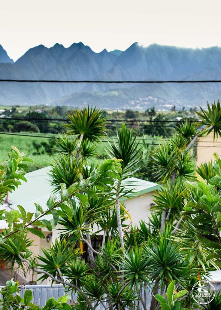 Panorama ile de la réunion depuis la Ravine des cabris à St Pierre