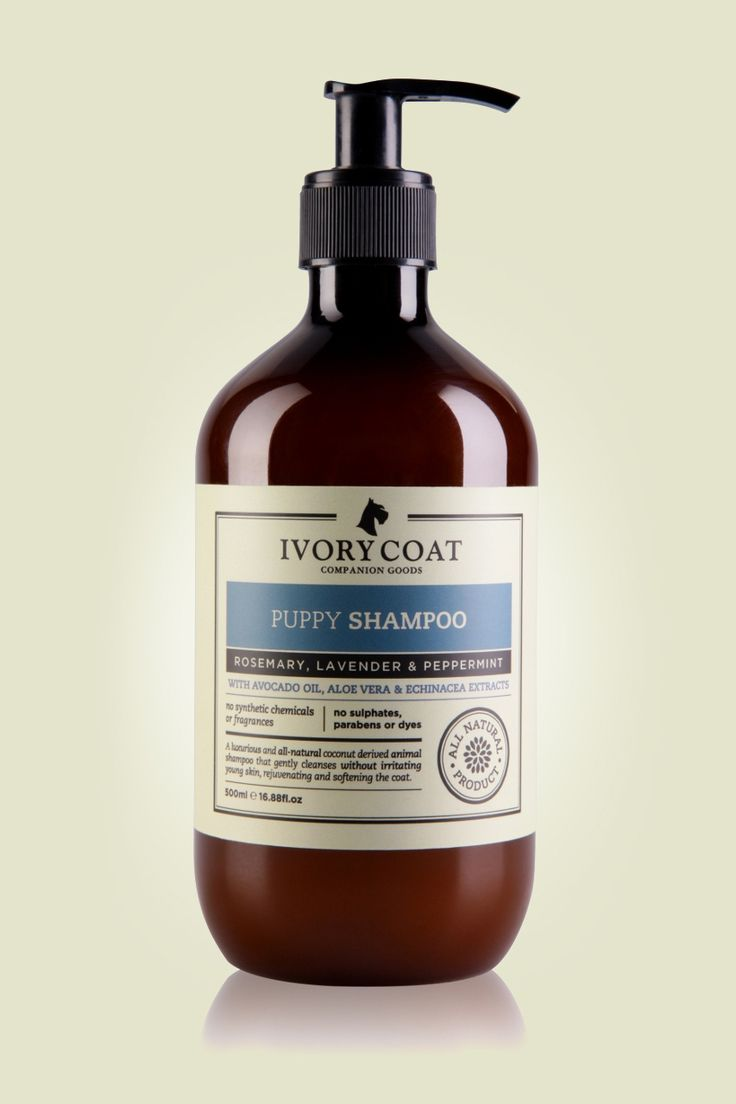 This was her puppy shampoo but we need to get the adult version. Ivory Coat Companion Goods - Puppy Shampoo, $24.90 (http://ivorycoat.com.au/puppy-shampoo-1/)