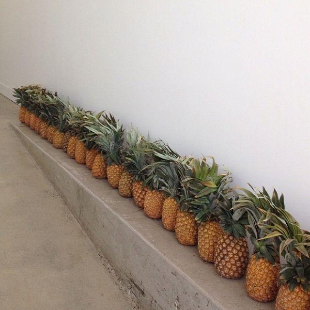 Megan Morton takes a great pic. I love pineapples!