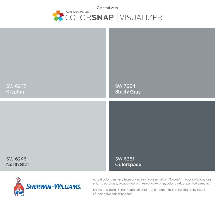 I found these colors with ColorSnap® Visualizer for iPhone by Sherwin-Williams: Krypton (SW 6247), North Star (SW 6246), Steely Gray (SW 7664), Outerspace (SW 6251).