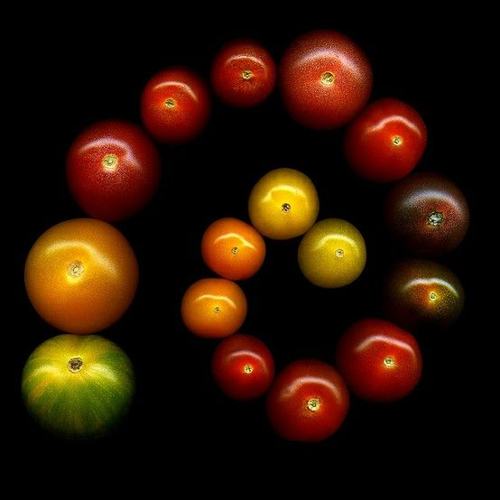 by magda.indigo   via tumblr: Colour, Minis Tomatoes They, Magda Indigo, Indigo Photography, Food Photography, Apples, Life Photography, Heirloom Tomatoes, Magdaindigo