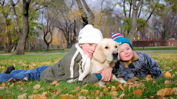 Se hvilke samfunns- og helsemessige gevinster kjæledyr gir deg og din familie. Barn med autisme er nevnt er nevnt i artikkelen fra tv2.