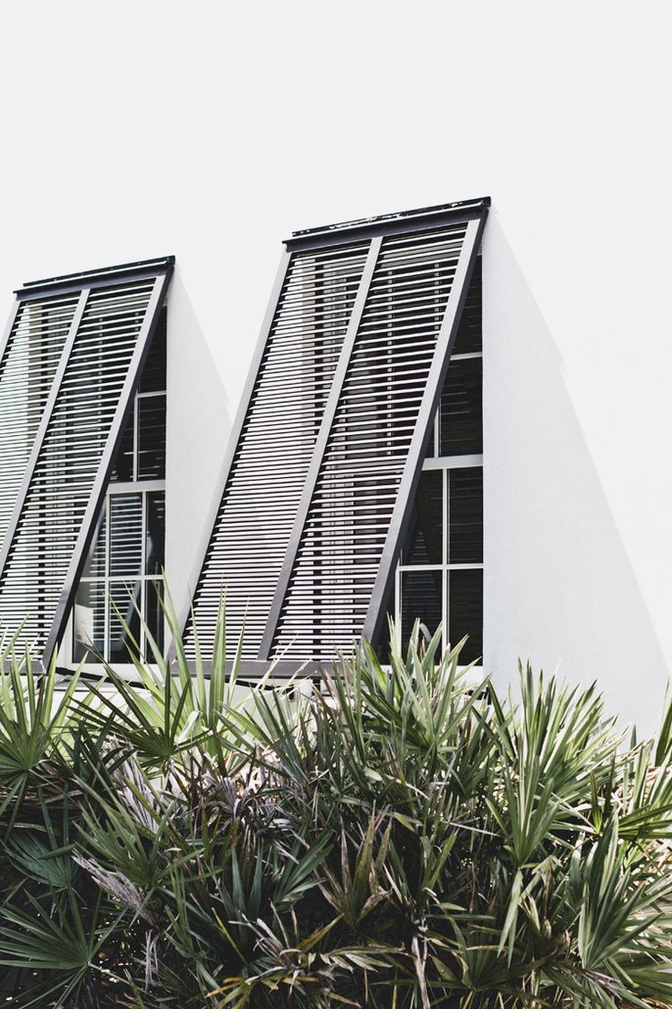 sun screens (The Veda House Blog)