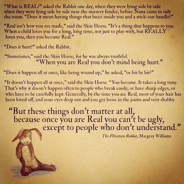 Best 25+ The Velveteen Rabbit Ideas On Pinterest