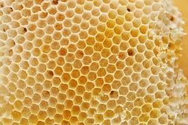 El panal de abejas es una superficie geométrica natural con textura.