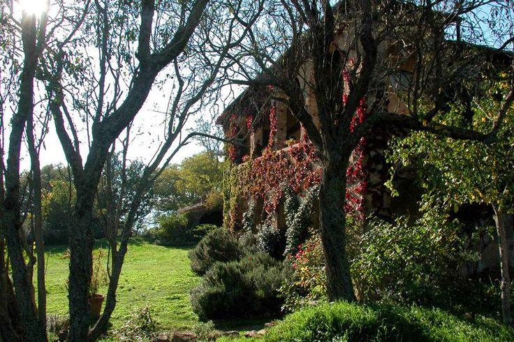 Villa Castelletto: Tuscany > Pienza Luxury Villa for Rent