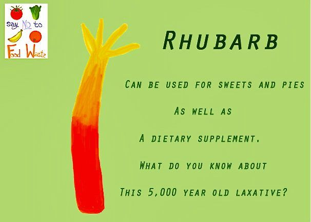 What do you know about Rhubarb?