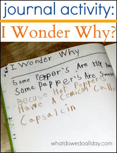 Practice writing skills :: Kids record I wonder why questions in their journals to encourage inquiry.