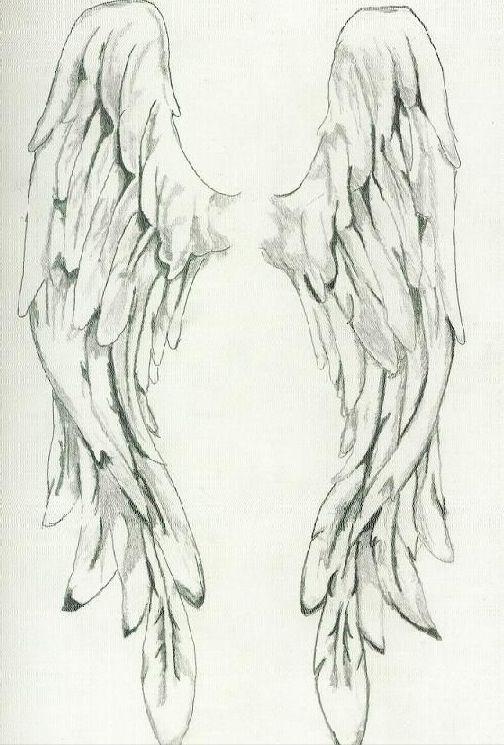 Abel wings drawing idea