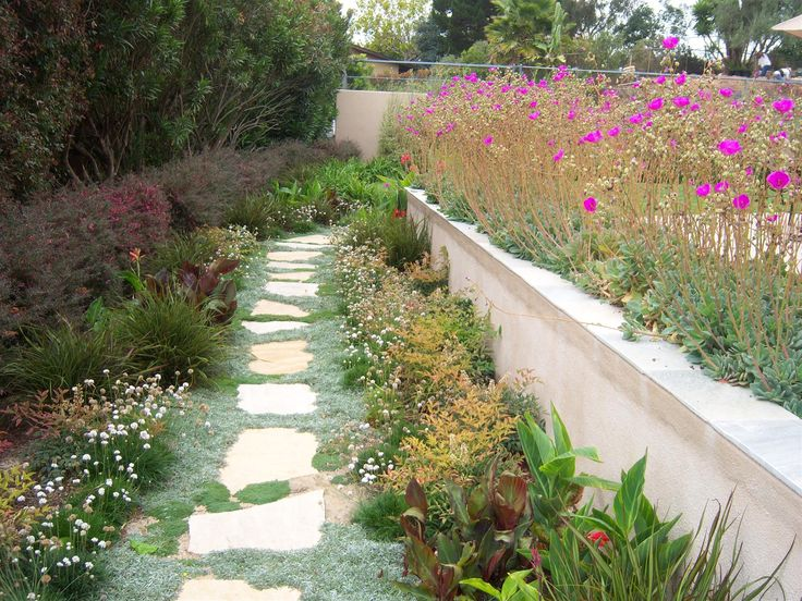 1000 Ideas About Drought Resistant Landscaping On