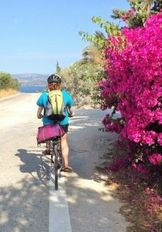 Biking to nesting beaches   | check it out at wildlifesense.com