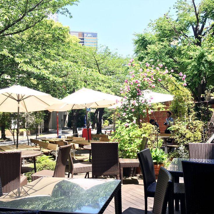 春のぽかぽか陽気を満喫しよう!緑豊かなテラス席のある東京都内のカフェ7選 | RETRIP[リトリップ]