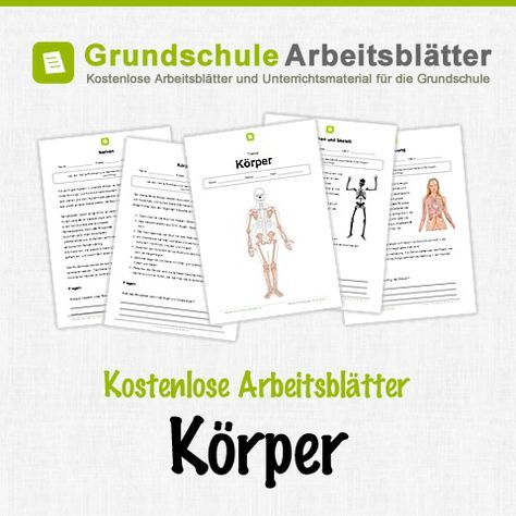 Kostenlose Arbeitsblätter und Unterrichtsmaterial für den Sachunterricht zum Thema Körper in der Grundschule.