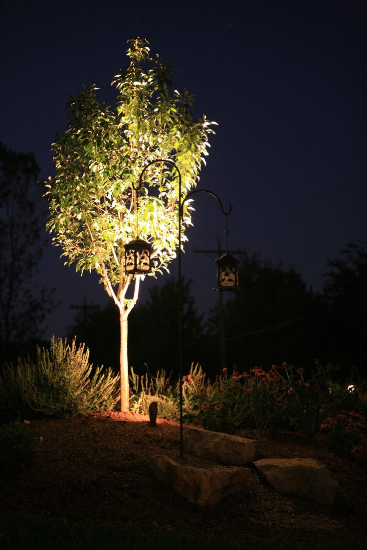 Outdoor lighting company lightscapes southern outdoor lighting - Outdoor Lighting Nightscape Uplighting Topekalandscape Tree Uplighting Topekalandscape