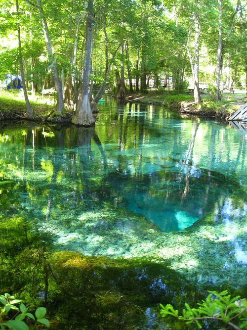 Florida-Turquoise Pool, Ginnie Springs, Florida I grew up swimming here. Everyone should experience this once in their life. The water is rushing out of the cavern in the middle, fresh spring water, so fast you can't swim into the cave. The water feeds the river. This spring also appeared in Southern Living. It's amazing. I miss my Florida home.