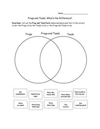 Printables Frog And Toad Worksheets 1000 images about frogs and toads on pinterest life cycles whats the difference
