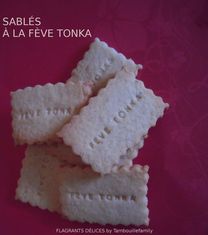 SABL�S � LA F�VE TONKA (� TOMBER PAR TERRE !!!)