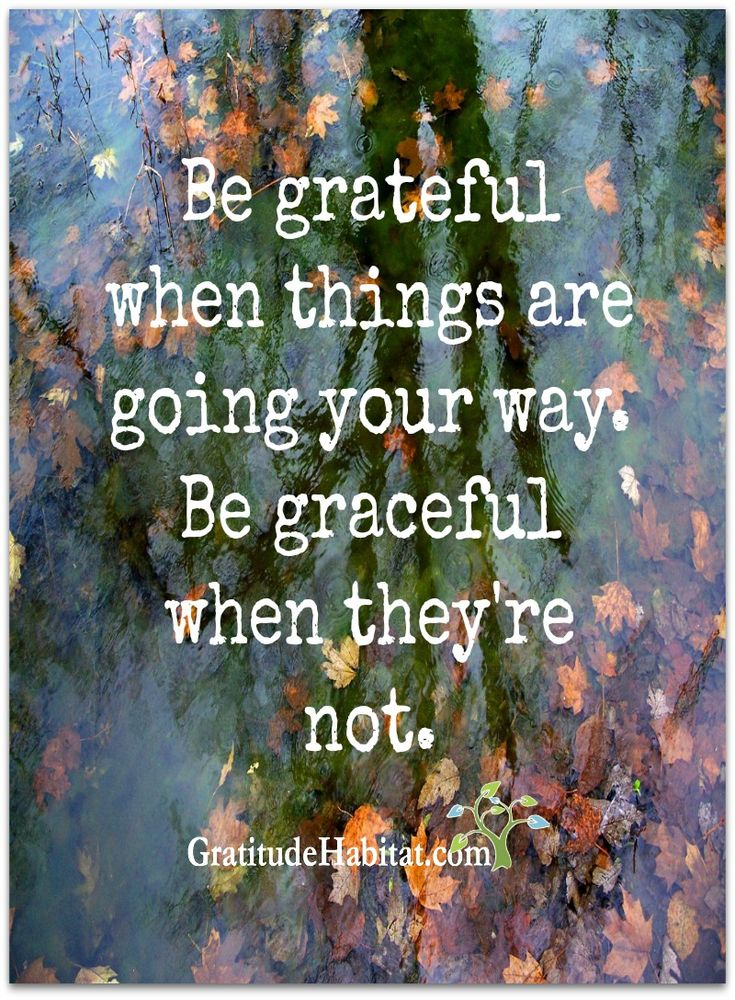Grateful and Graceful.  Visit us at: www.GratitudeHabitat.com