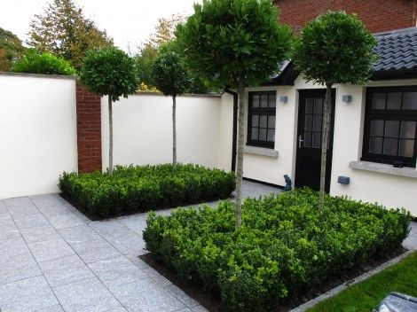 328 best Garden design topiary images on Pinterest Topiaries