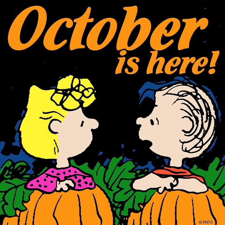 Its The Great Pumpkin Charlie Brown Quotes: 2059 Best Snoopy & The Peanuts Gang Images On Pinterest