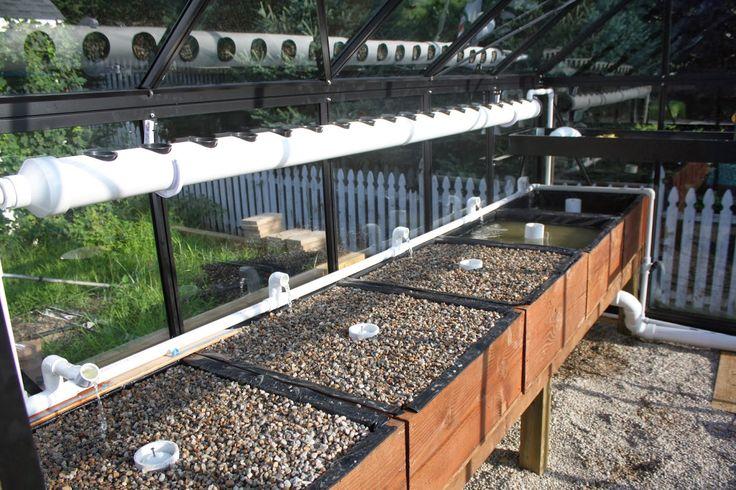 Greenhouse Aquaponics: The Grow Beds