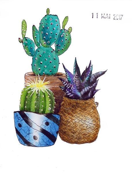 11 - A cactus
