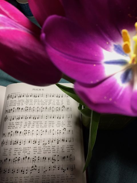 30 Days in Psalm 91 for Busy Mamas, Day 11: Singing