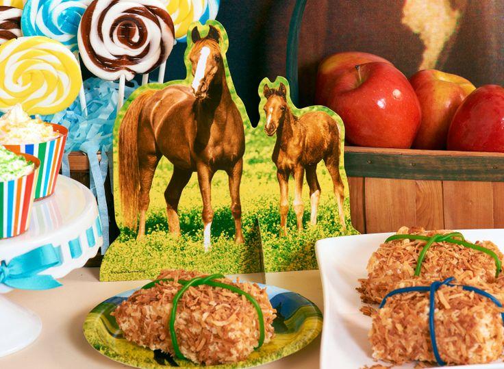 Wild Horse Party Idea