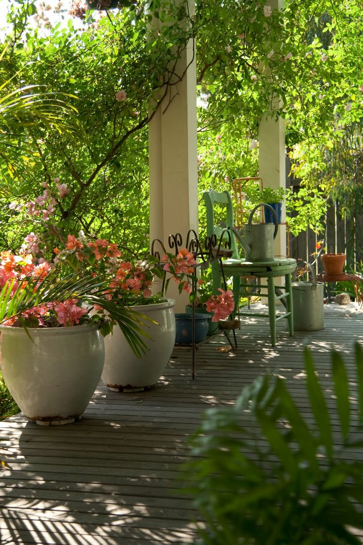 love in a b @ b verandah. love all the green and the white pots of bouganvillea!