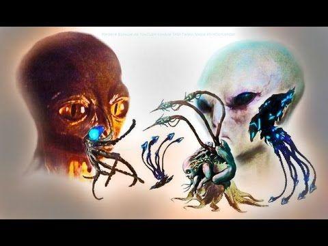 Кто такие Сумеры НЛО Спруты телепаты Правда о пришельцах