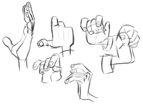 Some hand studies! Milt Kahl, and some from the Iron Giant. https://www.facebook.com/CharacterDesignReferences