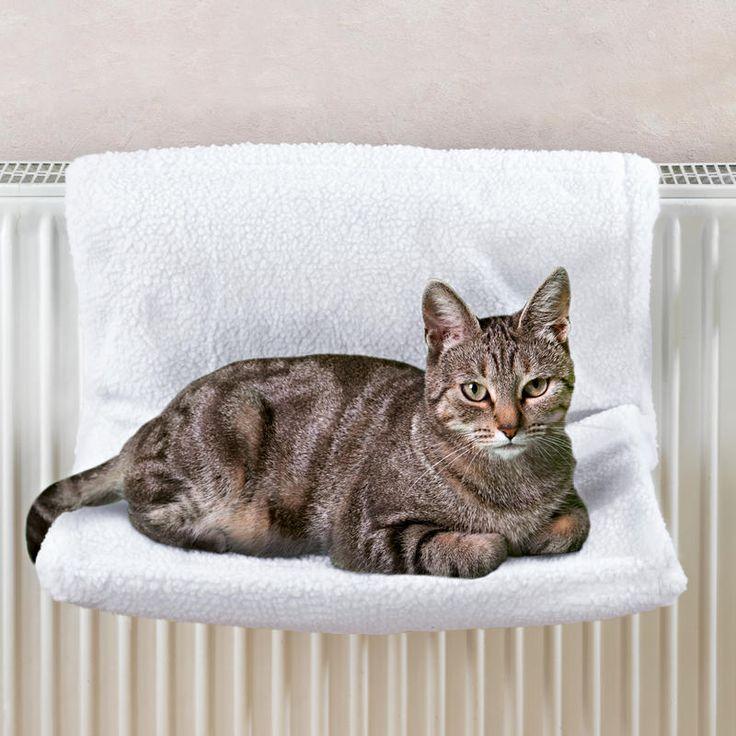 Kočičí lehátko na topení   Magnet 3Pagen #magnet3pagencz #3pagen #animals