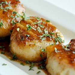 Perfect Seared Scallops recipe love