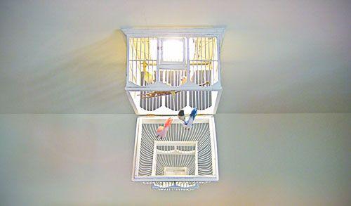 Lampadario per la cameretta di bambini a forma di gabbietta per uccelli