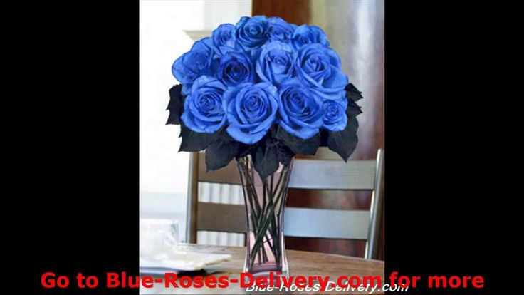 Blue Roses | Rare and Exotic | Blue Roses Delivery
