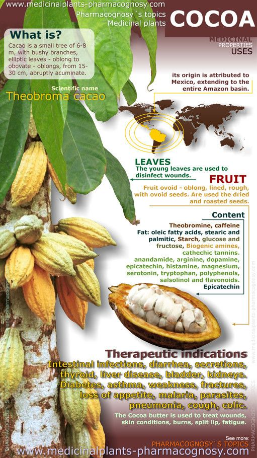Cacao benefits. Infographic. Summary of the general characteristics of the Cocoa. Medicinal properties, benefits and uses more common. Cocoa beans, fruit and leaves contents.  http://www.medicinalplants-pharmacognosy.com/herbs-medicinal-plants/cocoa-cacao/benefits-infography/