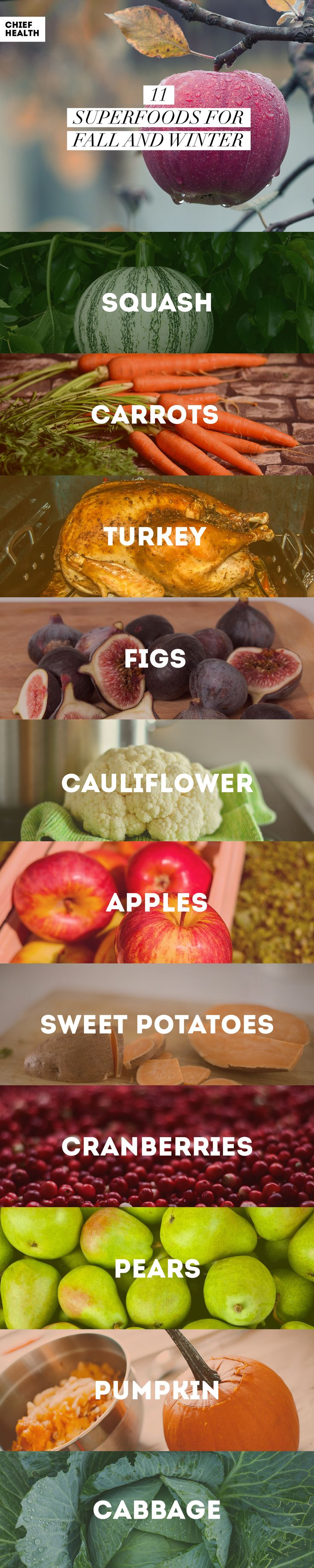 The weather is cooling off, and the meals are heating up as many produce options come into season. Take a look at these 11 foods you need to grab the next time you visit the grocery store.
