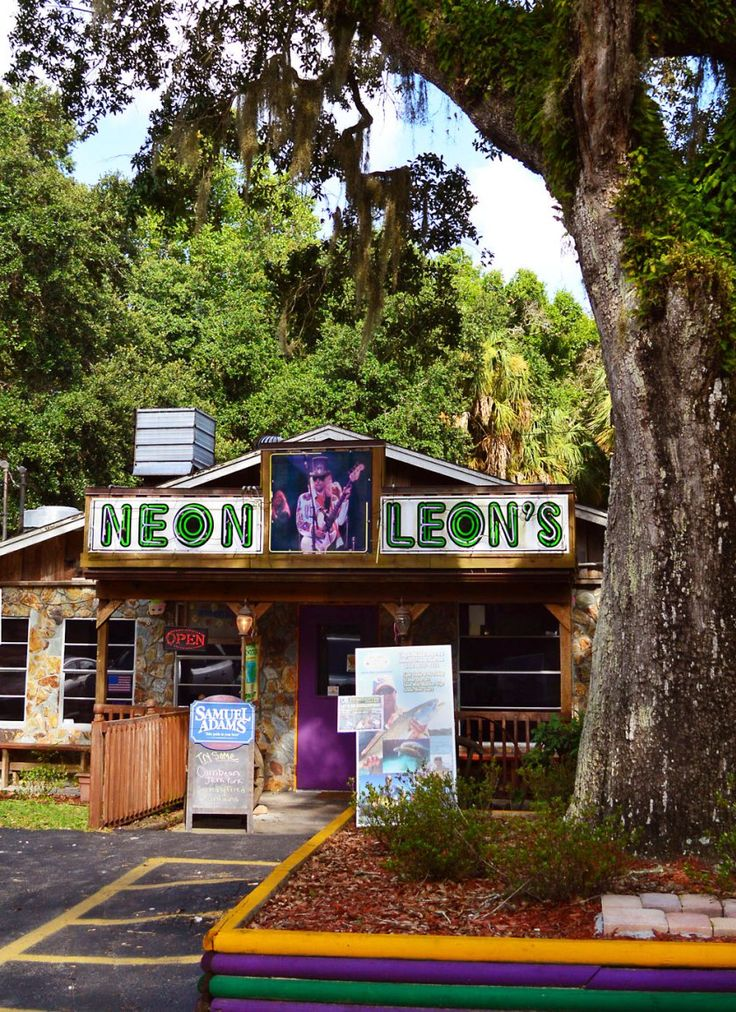 Neon Leon's  | Boating, Fishing, and an Tiny Island of No Return for Monkeys in Homosassa, Florida | Beaches Bars and Bungalows