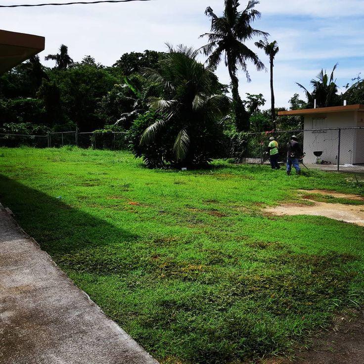 We Be Comin Guam Lawncare Lawnmaintenance Lawnservice Greengrass Rainyseason Itdoesntcutit Mycrew M Landscape Structure Lawn Care Ideal Gardens