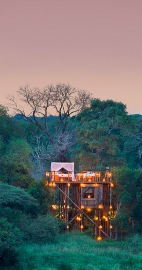The Tinyeleti Treehouse In South Africa.