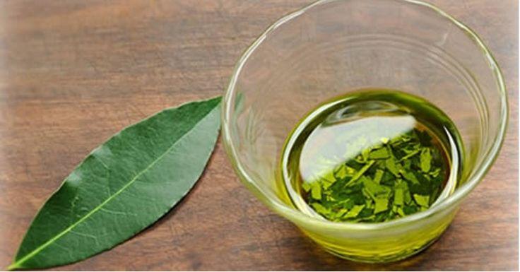 Le foglie di alloro posseggono proprietà analgesiche ed antinfiammatorie, ed aiutano ad alleviare il dolore causato dalle malattie reumatiche e non solo