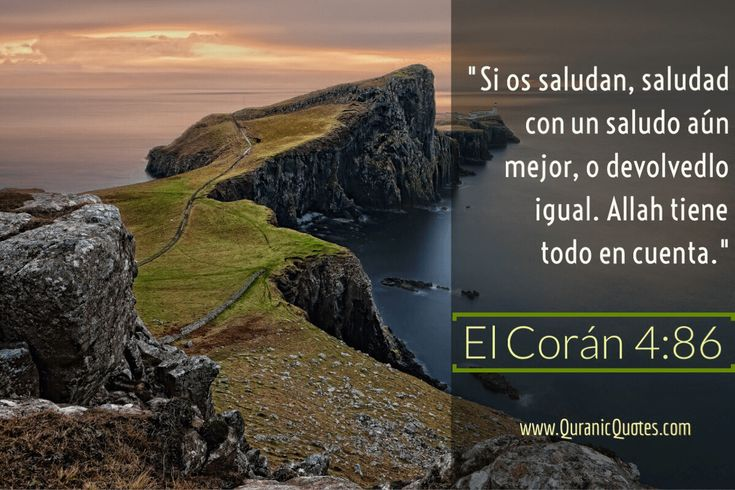 #71 El Corán 04:86 (Surah an-Nisa) And when you are greeted with a greeting, greet with a better (greeting) than it or return it; surely Allah takes account of all things. Si os saludan, saludad con un saludo aún mejor, o devolvedlo igual. Alá tiene todo en cuenta.