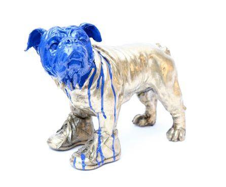 hond met schoenen aan