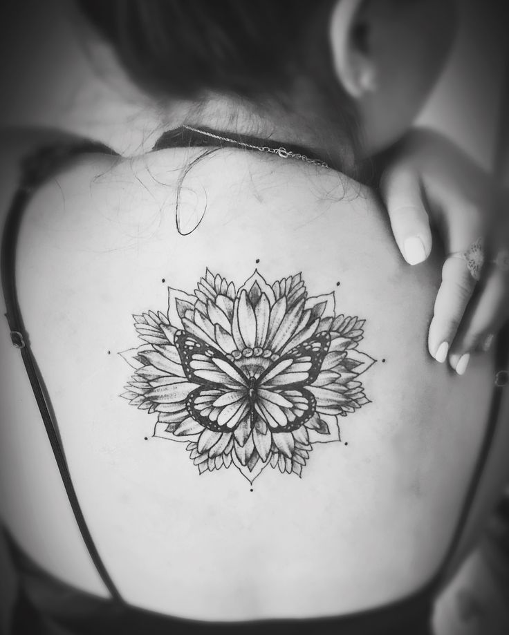 Best 25+ Butterfly Quote Tattoo Ideas On Pinterest